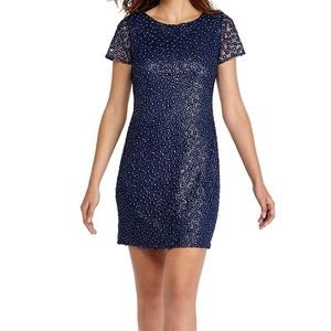The Limited Dresses - 🌟THE LIMITED Dress Blue Embroidered w Silver NWT